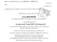 Beumier Aria