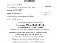 FALCIANI Michel