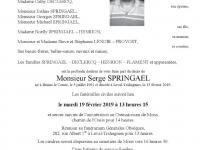 SPRINGAEL Serge