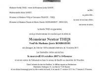 Thijs Nestor