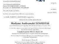 TZAFESTAS Andromaki
