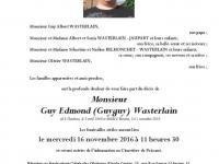 WASTERLAIN GUY